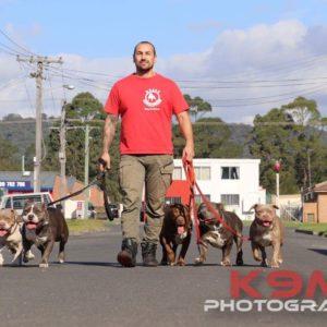 Dog Training Wollongong
